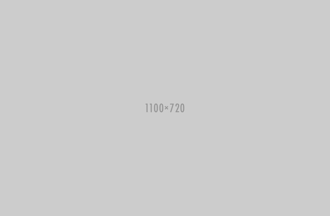 1100x720